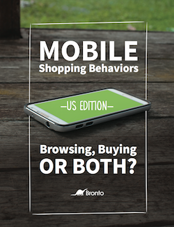 mobile-shopping-behaviors-abm
