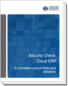 security-check-cloud-erp