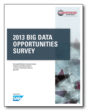 2013-big-data-opportunities-survey
