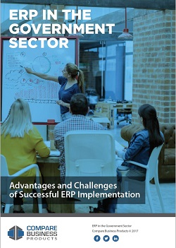 erp-in-the-government-sector