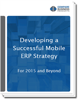 developing-a-successful-mobile-erp-strategy
