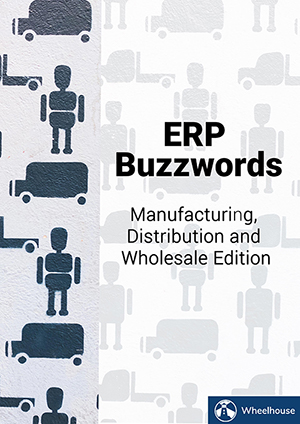 erp-buzzwords