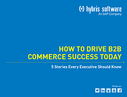 how-to-drive-b2b-commerce-success-today